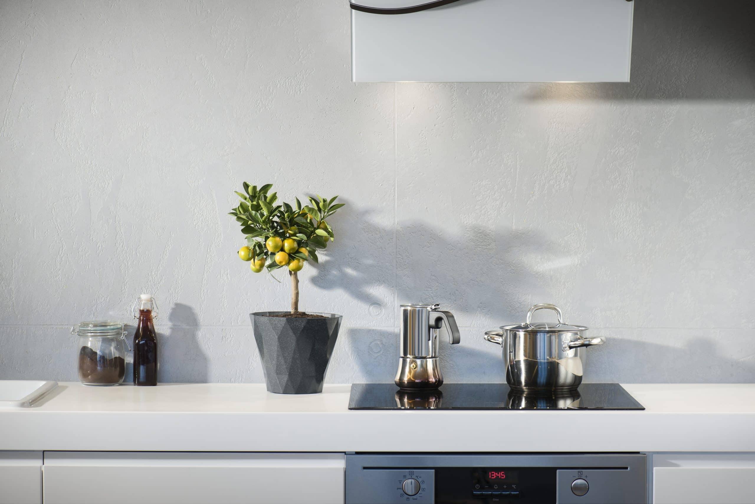 Cuisson Induction Avantages Inconvénients plaques à induction : comment les nettoyer ? - casserolle